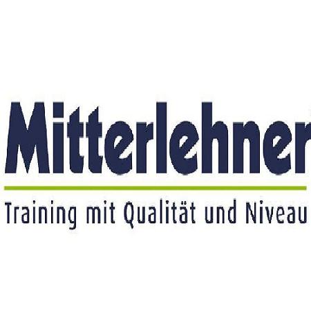 Mitterlehner1.png